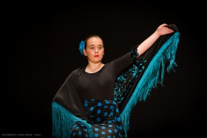 Flamenco_madrid