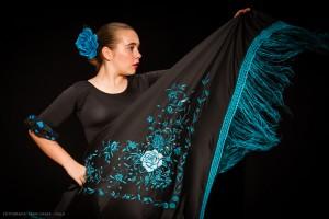 Flamenco_madrid